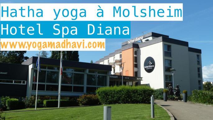 hotel-diana-molsheim-1346356743